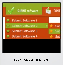 Aqua Button And Bar