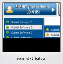 Aqua Html Button