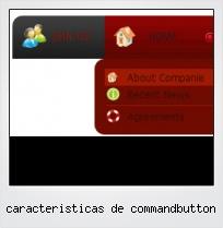 Caracteristicas De Commandbutton
