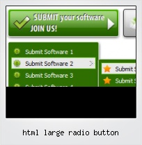 Html Large Radio Button