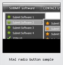 Html Radio Button Sample
