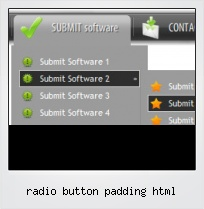 Radio Button Padding Html