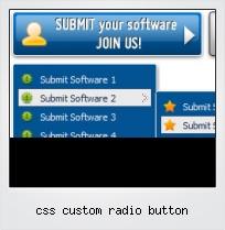 Css Custom Radio Button
