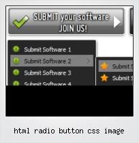 Html Radio Button Css Image